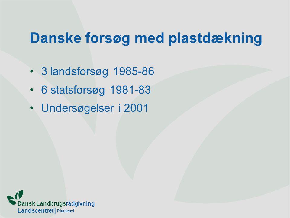 Dansk Landbrugsrådgivning Landscentret | Planteavl Danske forsøg med plastdækning 3 landsforsøg 1985-86 6 statsforsøg 1981-83 Undersøgelser i 2001