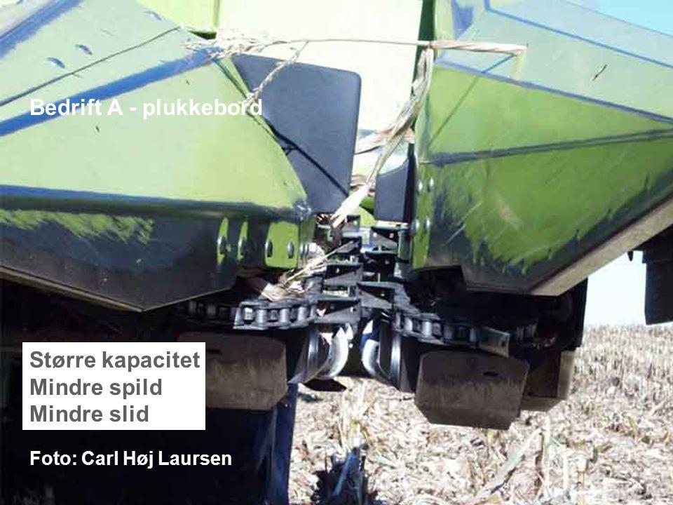 Dansk Landbrugsrådgivning Landscentret | Planteavl Bedrift A - plukkebord Større kapacitet Mindre spild Mindre slid Foto: Carl Høj Laursen