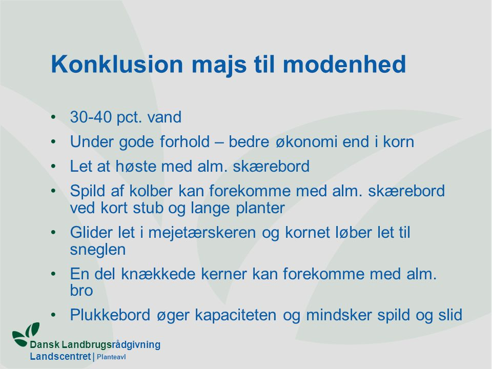 Dansk Landbrugsrådgivning Landscentret | Planteavl Konklusion majs til modenhed 30-40 pct.