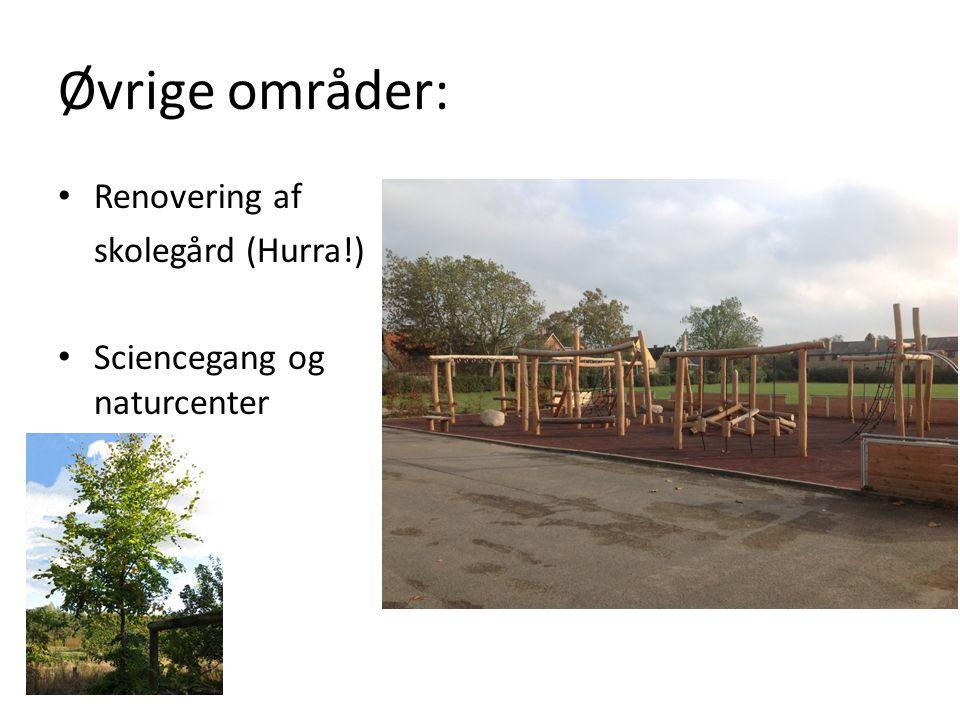 Øvrige områder: Renovering af skolegård (Hurra!) Sciencegang og naturcenter