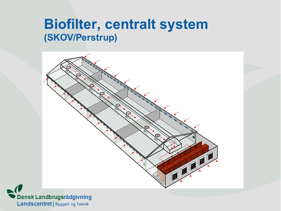 Dansk Landbrugsrådgivning Landscentret | Byggeri og Teknik Biofilter, centralt system (SKOV/Perstrup)
