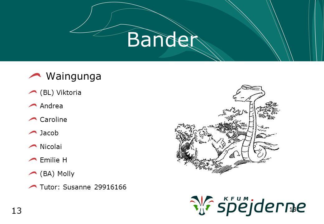 13 Bander Waingunga (BL) Viktoria Andrea Caroline Jacob Nicolai Emilie H (BA) Molly Tutor: Susanne 29916166