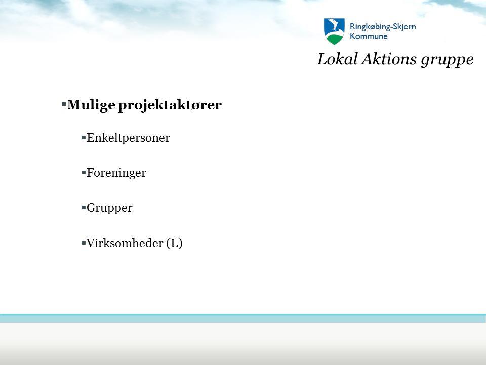 Lokal Aktions gruppe  Mulige projektaktører  Enkeltpersoner  Foreninger  Grupper  Virksomheder (L)