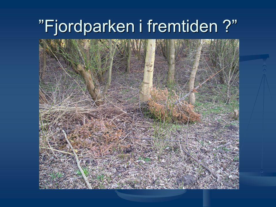 Fjordparken i fremtiden