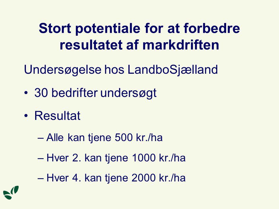 Stort potentiale for at forbedre resultatet af markdriften Undersøgelse hos LandboSjælland 30 bedrifter undersøgt Resultat –Alle kan tjene 500 kr./ha –Hver 2.