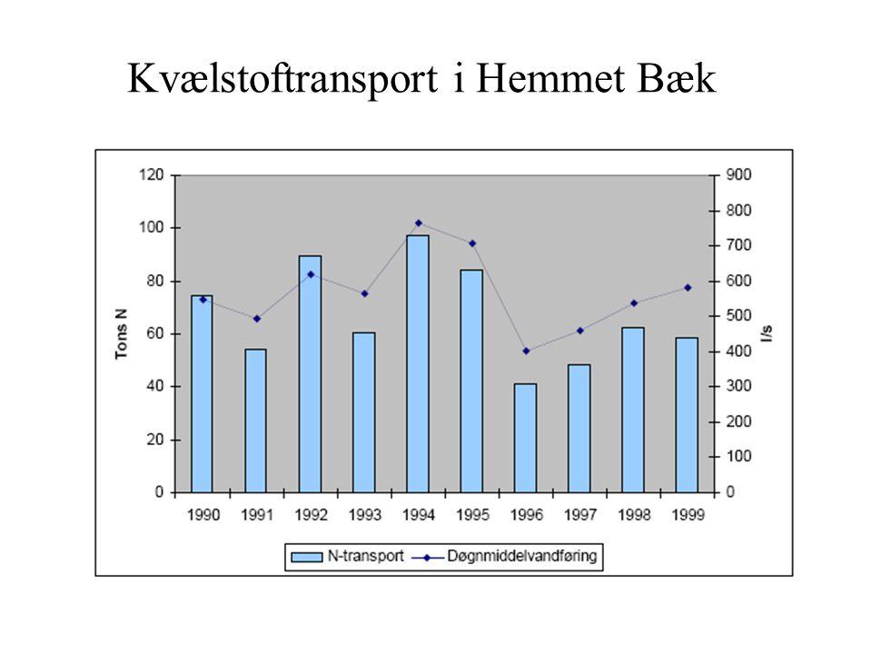 Kvælstoftransport i Hemmet Bæk