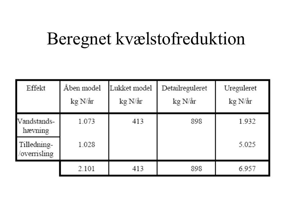 Beregnet kvælstofreduktion