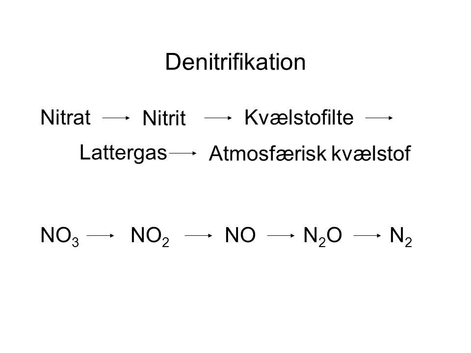Denitrifikation Nitrat Nitrit Atmosfærisk kvælstof N2ON2O Lattergas Kvælstofilte N2N2 NONO 2 NO 3