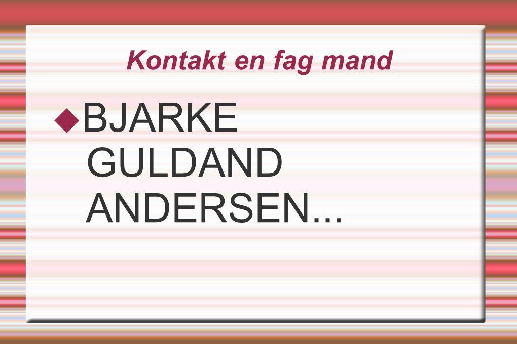 Kontakt en fag mand  BJARKE GULDAND ANDERSEN...