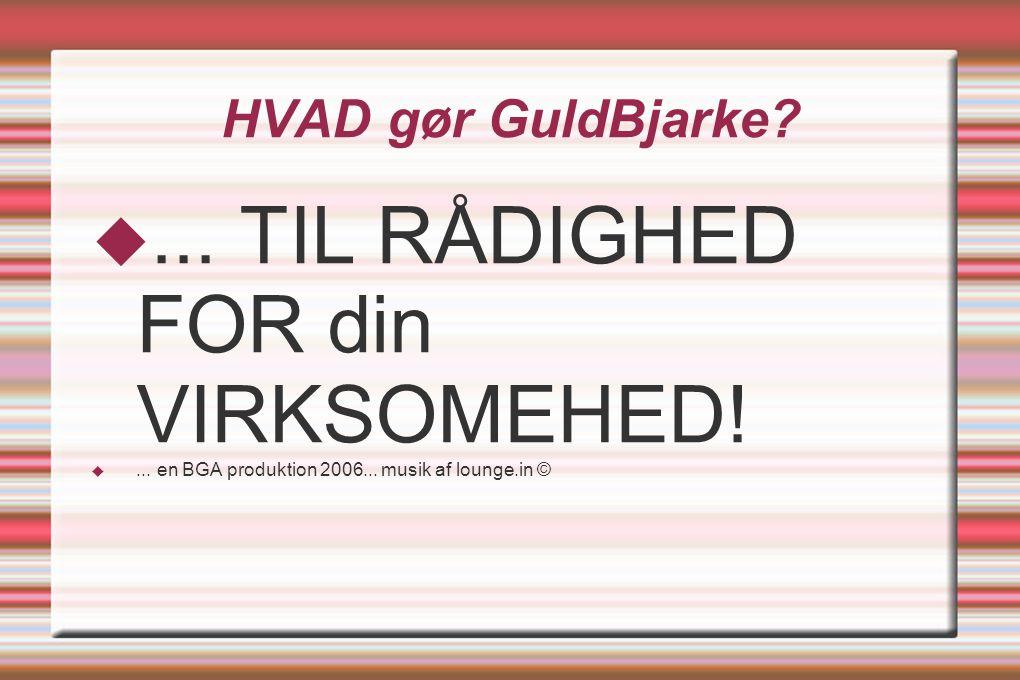 HVAD gør GuldBjarke. ... TIL RÅDIGHED FOR din VIRKSOMEHED.