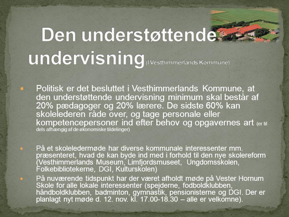 Politisk er det besluttet i Vesthimmerlands Kommune, at den understøttende undervisning minimum skal består af 20% pædagoger og 20% lærere.
