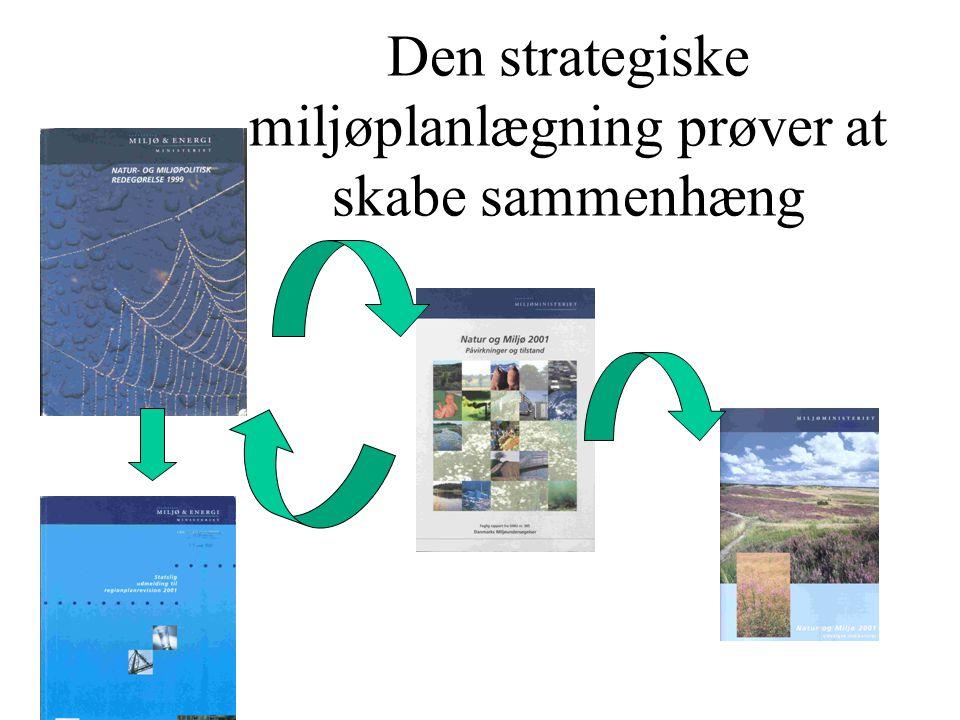 Den strategiske miljøplanlægning prøver at skabe sammenhæng