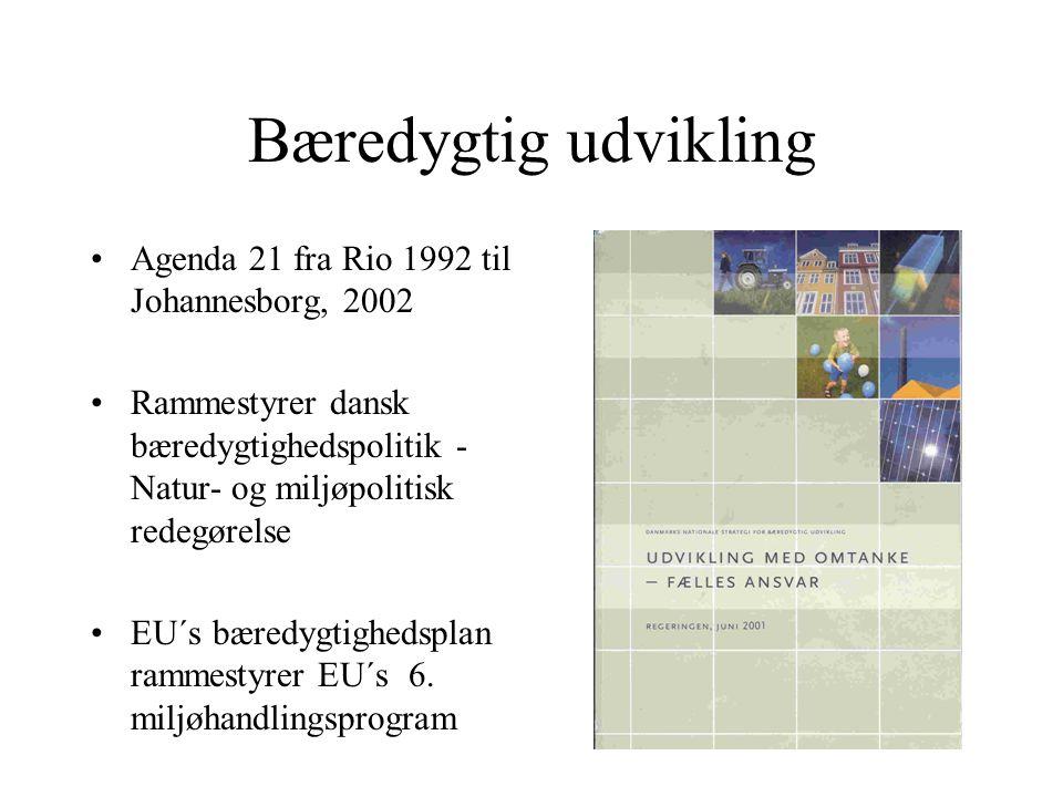Bæredygtig udvikling Agenda 21 fra Rio 1992 til Johannesborg, 2002 Rammestyrer dansk bæredygtighedspolitik - Natur- og miljøpolitisk redegørelse EU´s bæredygtighedsplan rammestyrer EU´s 6.