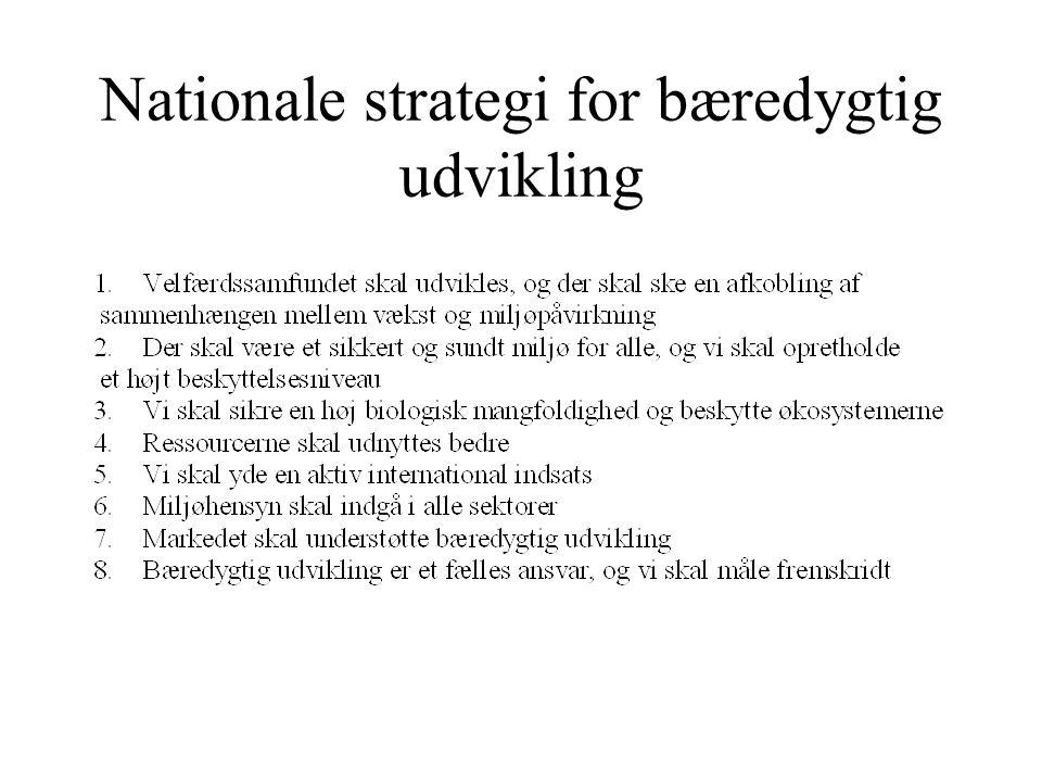 Nationale strategi for bæredygtig udvikling