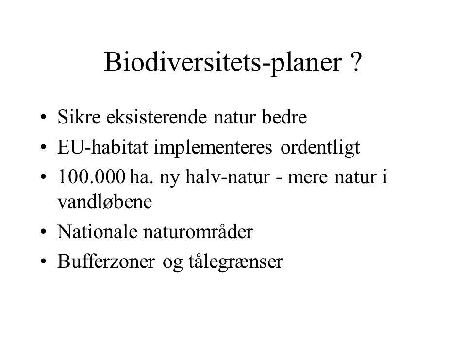 Biodiversitets-planer .