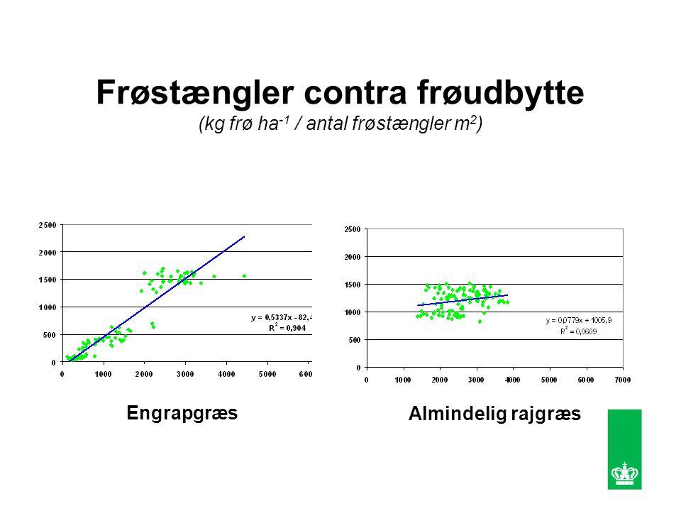 Frøstængler contra frøudbytte (kg frø ha -1 / antal frøstængler m 2 ) Engrapgræs Almindelig rajgræs