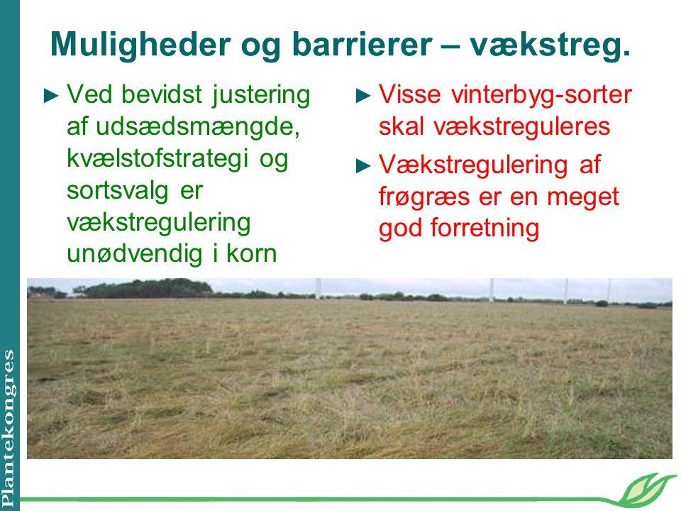 Muligheder og barrierer – vækstreg.
