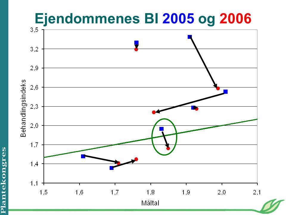 Ejendommenes BI 2005 og 2006