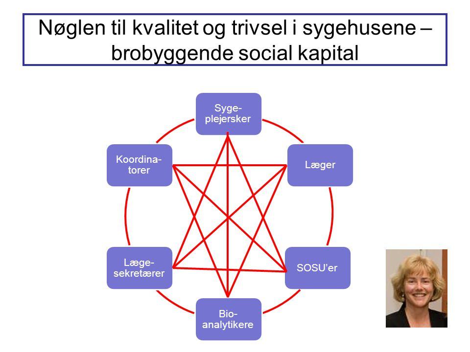 Nøglen til kvalitet og trivsel i sygehusene – brobyggende social kapital Syge- plejersker LægerSOSU'er Bio- analytikere Læge- sekretærer Koordina- torer