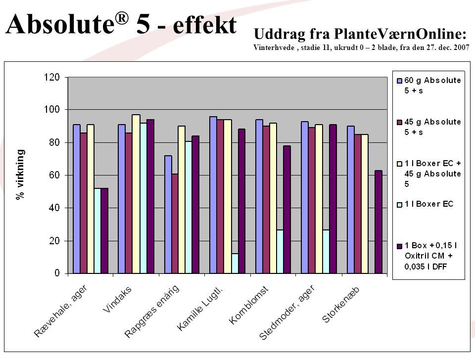 Uddrag fra PlanteVærnOnline: Vinterhvede, stadie 11, ukrudt 0 – 2 blade, fra den 27.