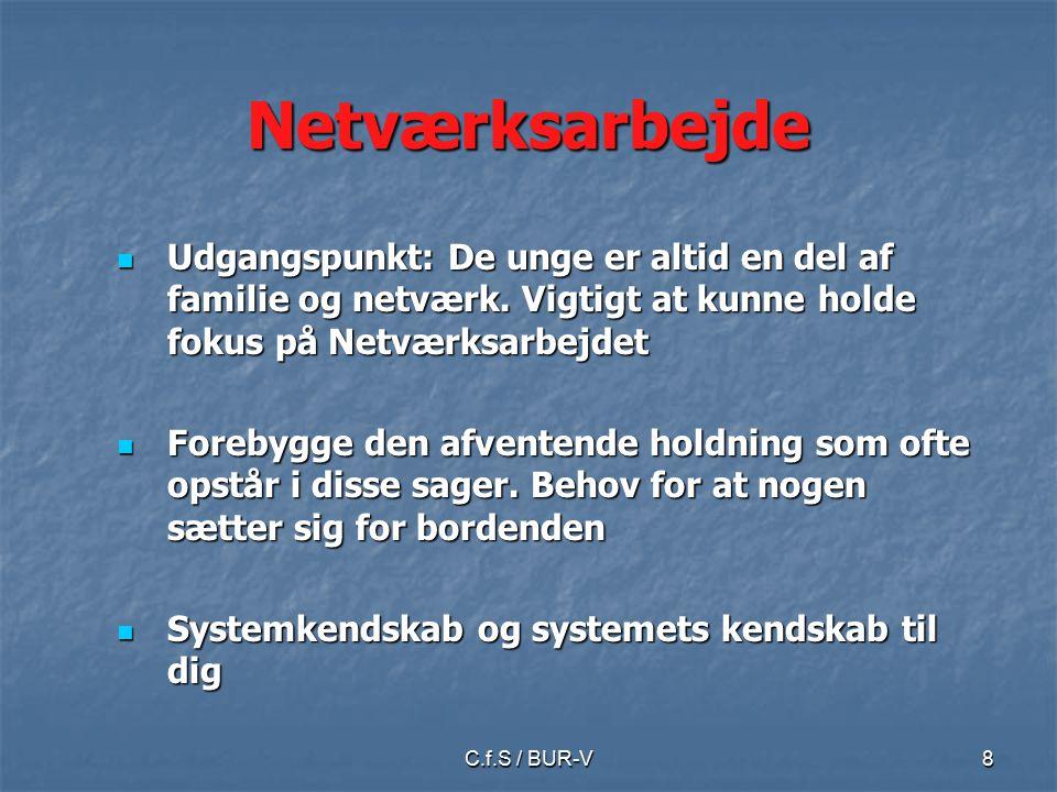 C.f.S / BUR-V8 Netværksarbejde Udgangspunkt: De unge er altid en del af familie og netværk.