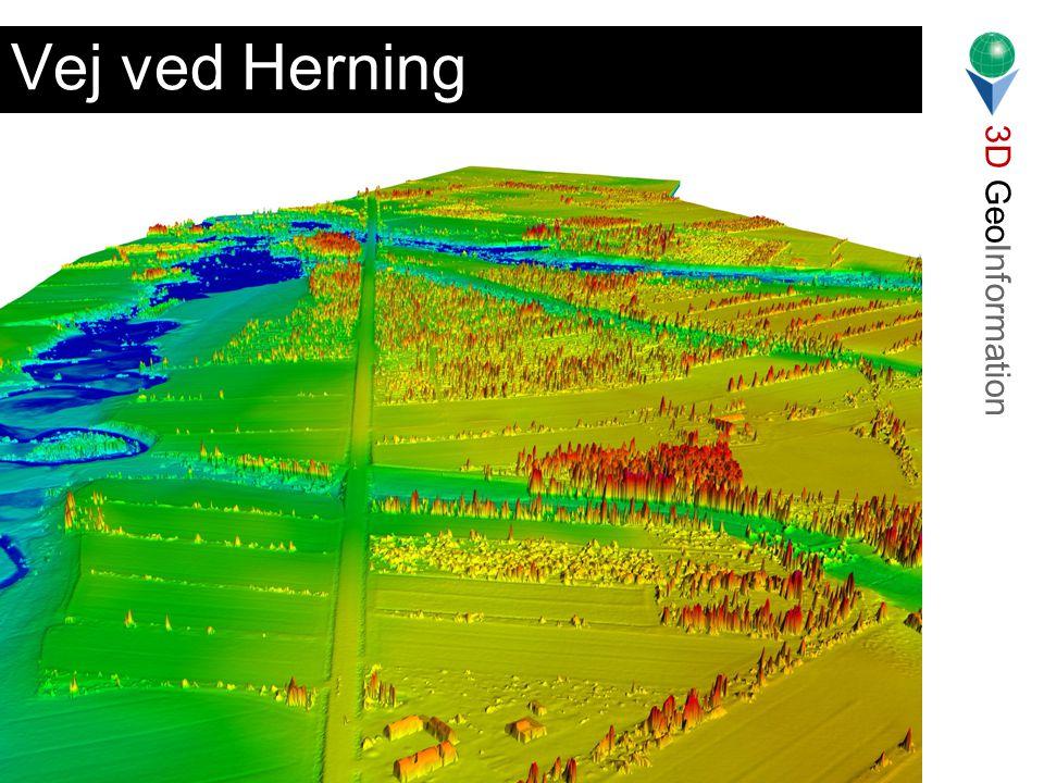 3D GeoInformation Lars Bodum Landinspektørstudiets 7. Semester 2001 Vej ved Herning