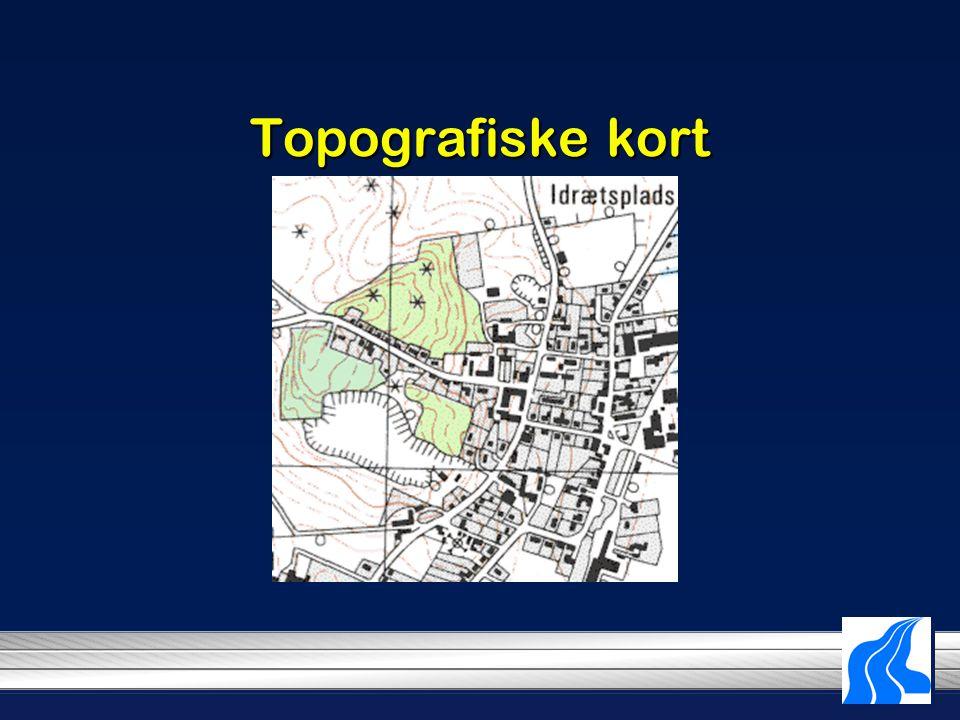 Topografiske kort