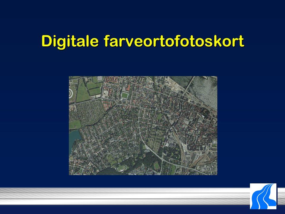 Digitale farveortofotoskort
