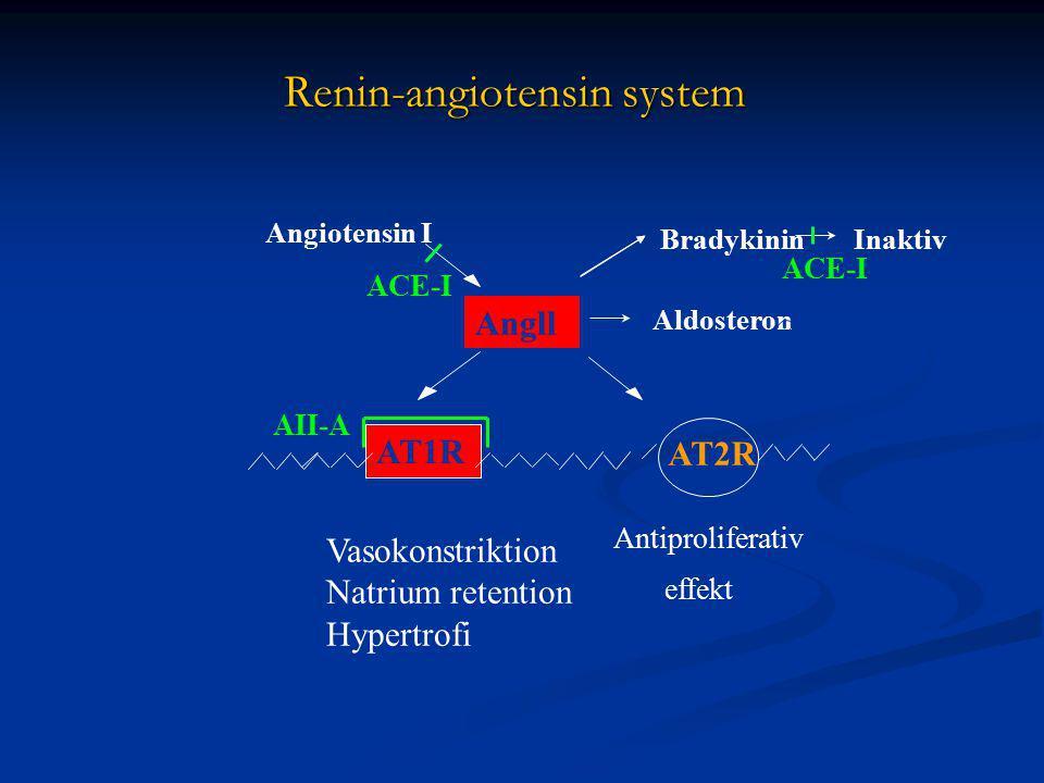Renin-angiotensin system AII-A Angll AT1R AT2R Vasokonstriktion Natrium retention Hypertrofi Antiproliferativ effekt Angiotensin I Aldosteron Bradykinin + ACE-I Inaktiv