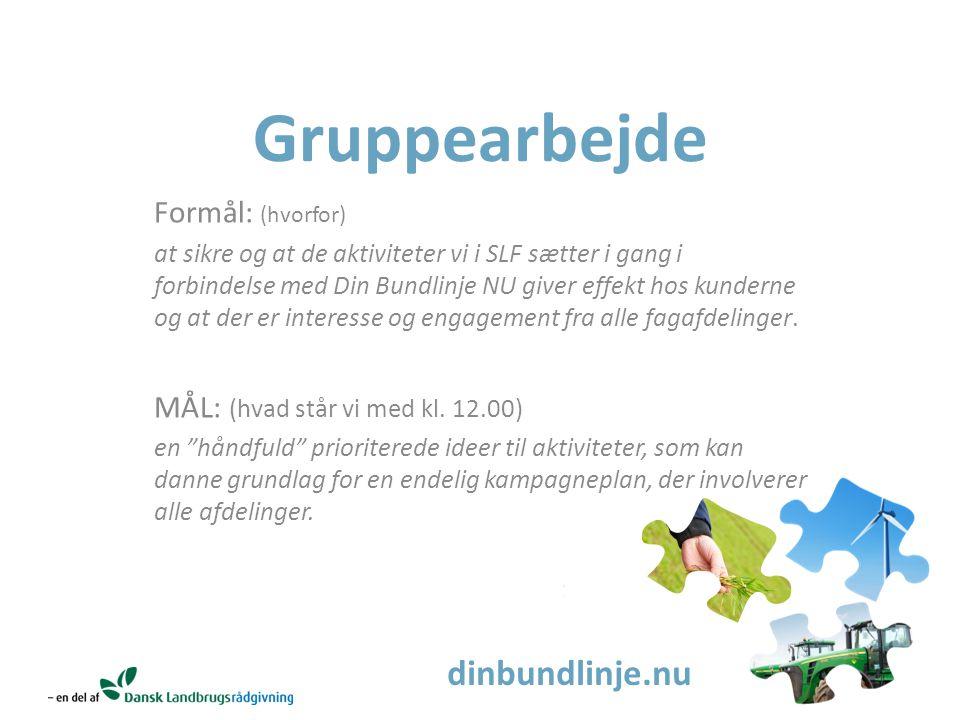 dinbundlinje.nu Gruppearbejde Formål: (hvorfor) at sikre og at de aktiviteter vi i SLF sætter i gang i forbindelse med Din Bundlinje NU giver effekt hos kunderne og at der er interesse og engagement fra alle fagafdelinger.