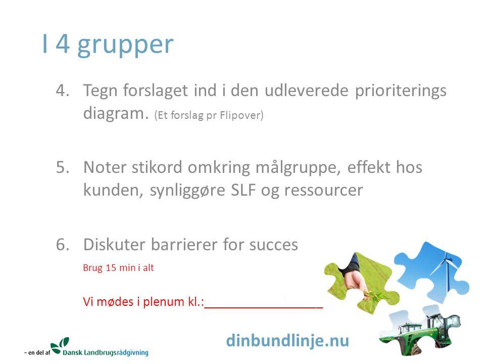 dinbundlinje.nu I 4 grupper 4.Tegn forslaget ind i den udleverede prioriterings diagram.