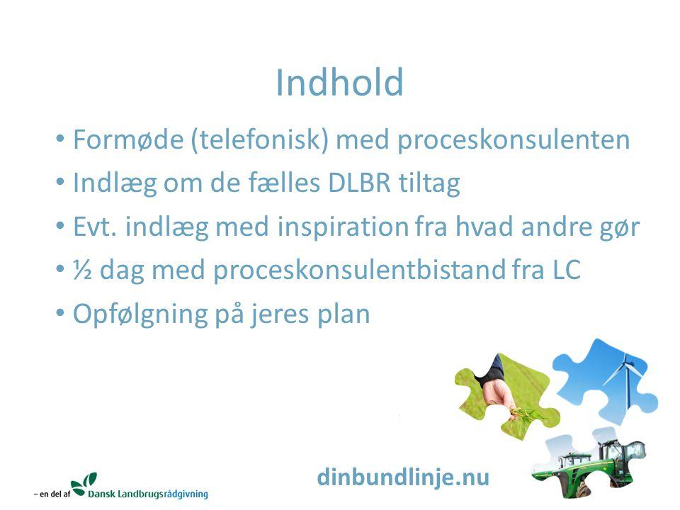 dinbundlinje.nu Indhold Formøde (telefonisk) med proceskonsulenten Indlæg om de fælles DLBR tiltag Evt.