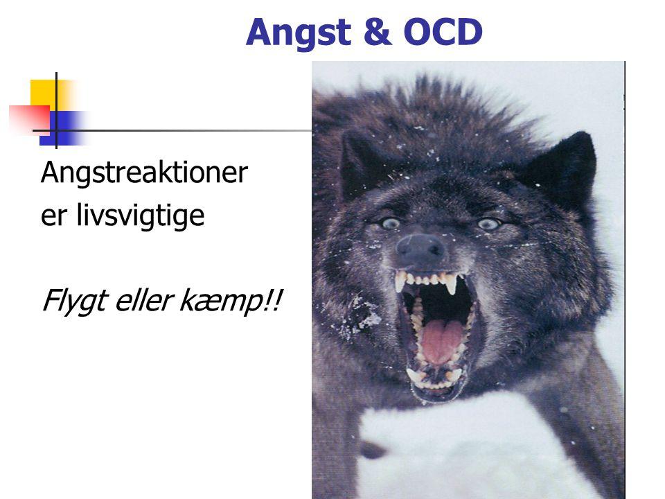 Angst & OCD Angstreaktioner er livsvigtige Flygt eller kæmp!!
