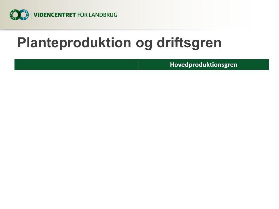Planteproduktion og driftsgren Hovedproduktionsgren