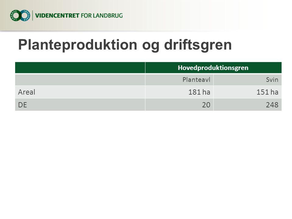 Planteproduktion og driftsgren Hovedproduktionsgren PlanteavlSvin Areal181 ha151 ha DE20248