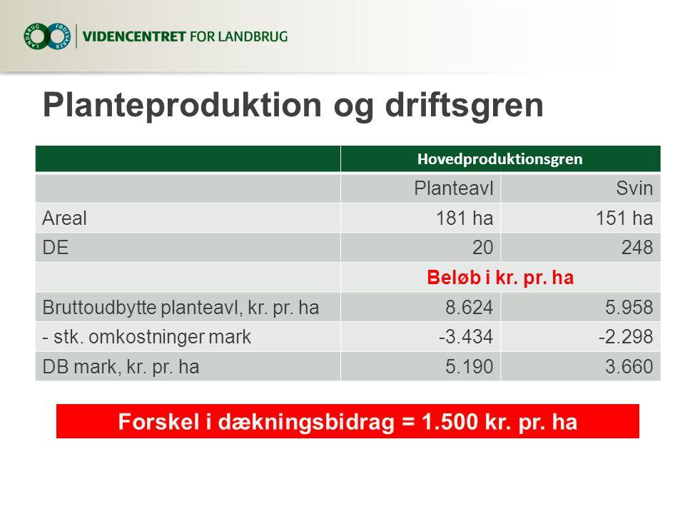 Planteproduktion og driftsgren Hovedproduktionsgren PlanteavlSvin Areal181 ha151 ha DE20248 Beløb i kr.