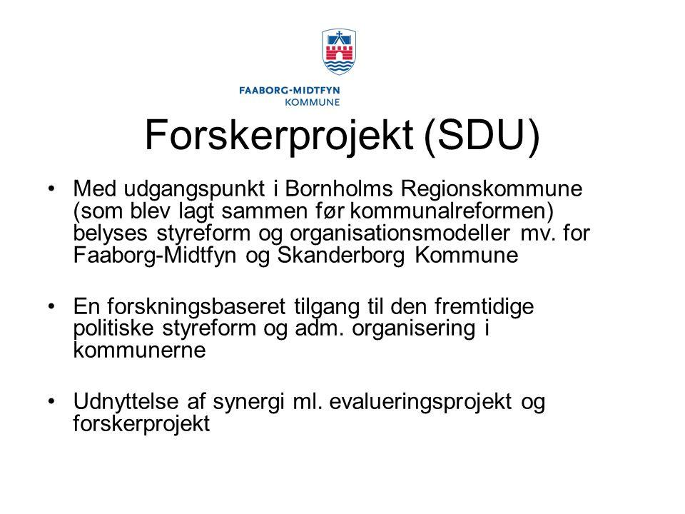 Forskerprojekt (SDU) Med udgangspunkt i Bornholms Regionskommune (som blev lagt sammen før kommunalreformen) belyses styreform og organisationsmodeller mv.