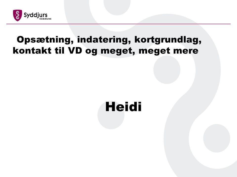 Opsætning, indatering, kortgrundlag, kontakt til VD og meget, meget mere Heidi