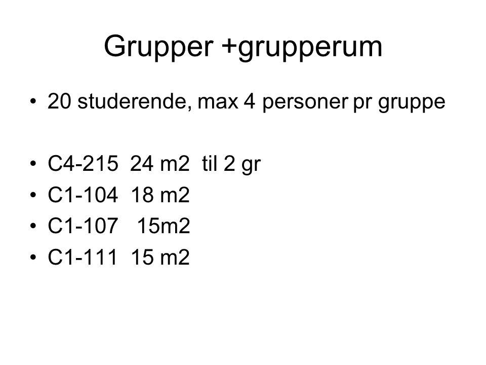 Grupper +grupperum 20 studerende, max 4 personer pr gruppe C4-215 24 m2 til 2 gr C1-104 18 m2 C1-107 15m2 C1-111 15 m2
