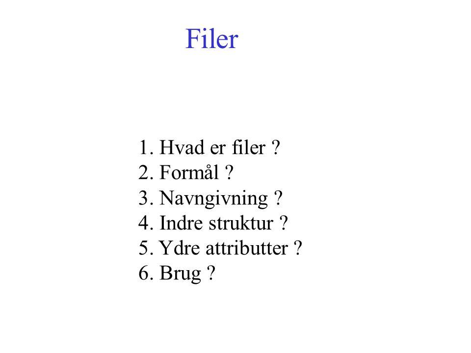 Filer 1. Hvad er filer . 2. Formål . 3. Navngivning .