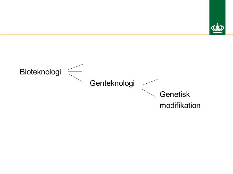 Bioteknologi Genteknologi Genetisk modifikation