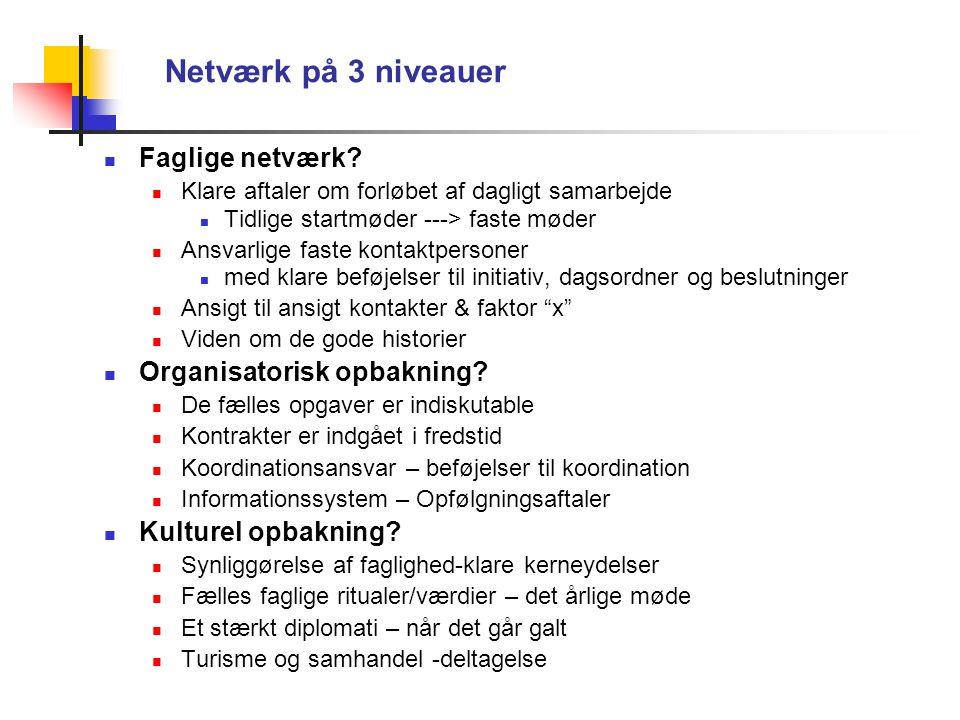 Netværk på 3 niveauer Faglige netværk.
