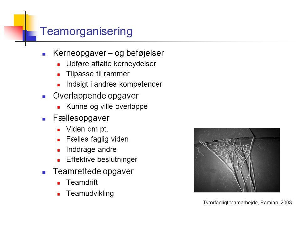 Teamorganisering Kerneopgaver – og beføjelser Udføre aftalte kerneydelser Tllpasse til rammer Indsigt i andres kompetencer Overlappende opgaver Kunne og ville overlappe Fællesopgaver Viden om pt.