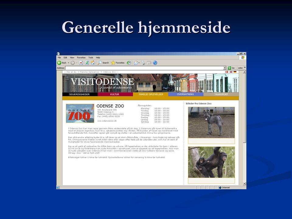 Generelle hjemmeside