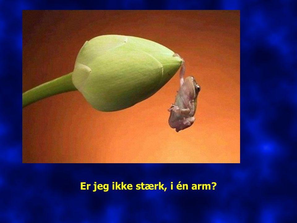 Er jeg ikke stærk, i én arm