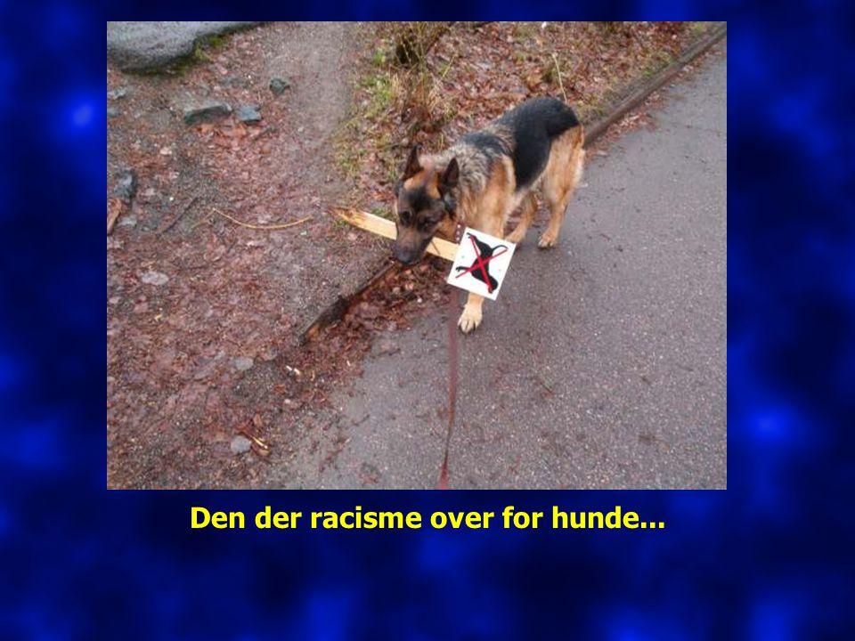 Den der racisme over for hunde...
