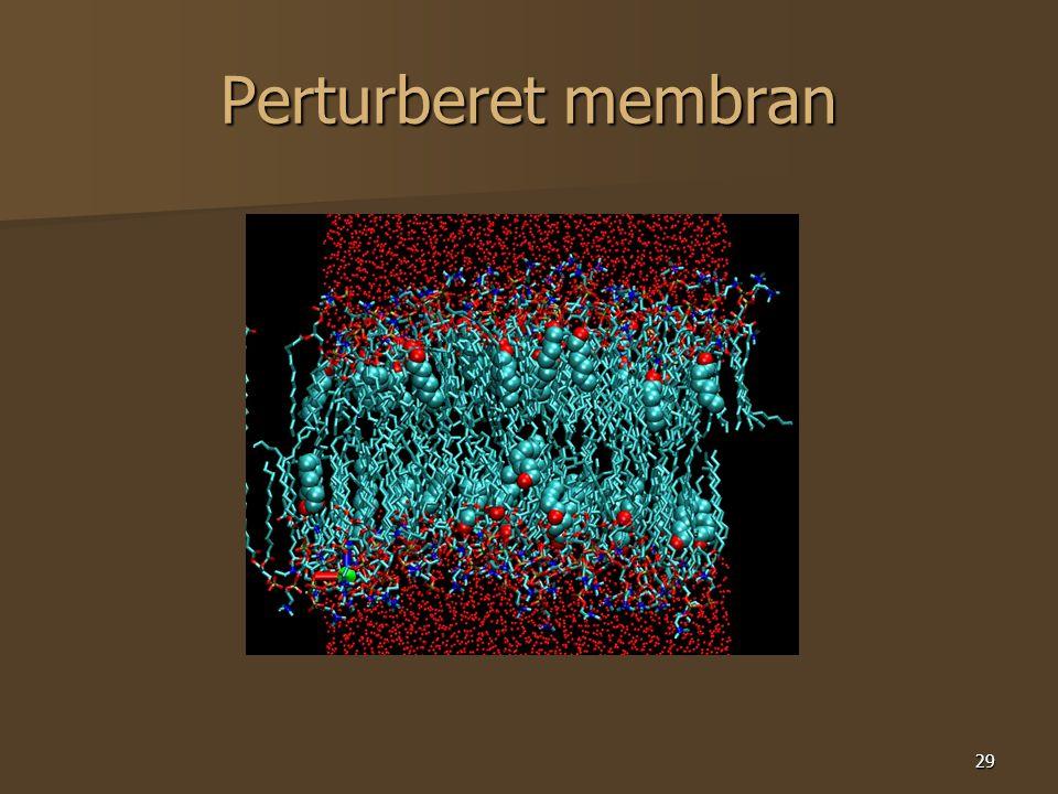 29 Perturberet membran