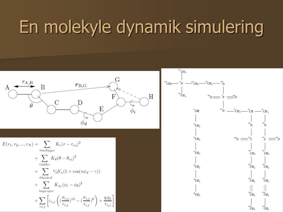 40 En molekyle dynamik simulering