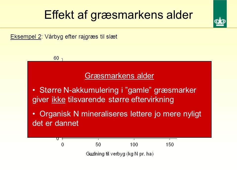 Effekt af græsmarkens alder Eksempel 2: Vårbyg efter rajgræs til slæt Græsmarkens alder Større N-akkumulering i gamle græsmarker giver ikke tilsvarende større eftervirkning Organisk N mineraliseres lettere jo mere nyligt det er dannet