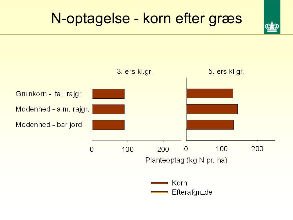 N-optagelse - korn efter græs